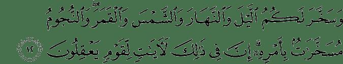 Surat An Nahl Ayat 12