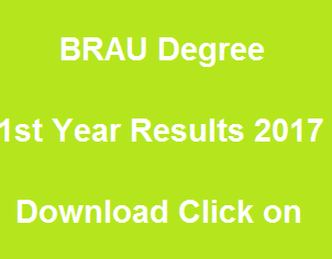 manabadi brau degree 1st year results 2017