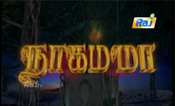 Nagamma 19-10-2017 – Raj tv Serial 19-10-17 Episode 88