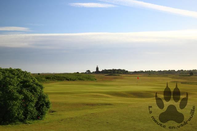 Suede-Scanie-Falsterbo-golf