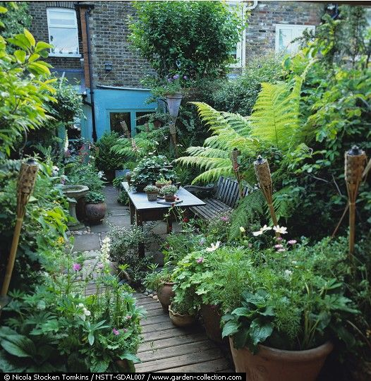 Small jungle style gardens from moon to moon bloglovin for Creating a small garden