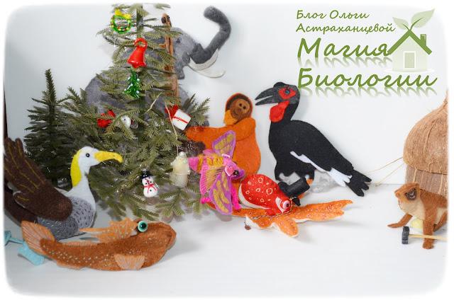 пальчиковые-игрушки-слон,илистый-прыгун-галапагосский-альбатрос-винный-бражник-осьминог-кафрский-ворон-мартышка-сурикат-орангутан