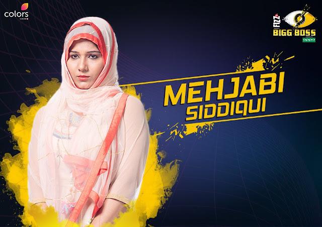Mehjabi Siddiqui (Bigg Boss 11 Contestant)