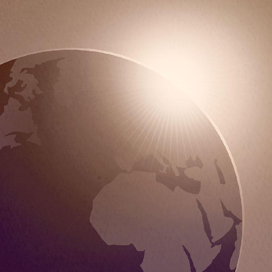 Tradescantia pendula - WikiVisually
