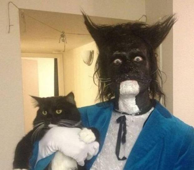 17 tiết mục cosplay khiến hội thú cưng ghét cay, ghét đắng chủ nhân