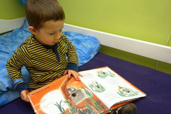 Trzylatek i książka koala zielona sowa