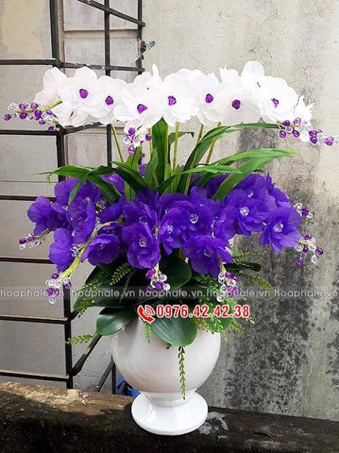 Hoa da pha le tai Dong Tam