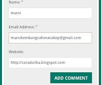 Cara Blog Blogspot Berkomentar Pada Wordpres Agar Dapatkan Backlink