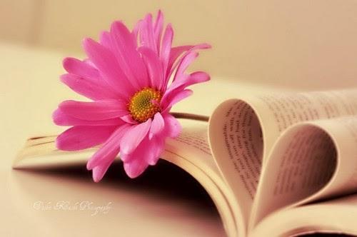 Kata Kata Bijak Kesetiaan dan Ketulusan Hati