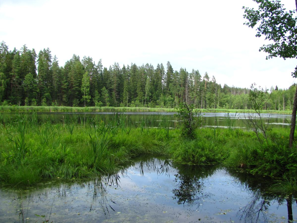 озеро Змеиное№3