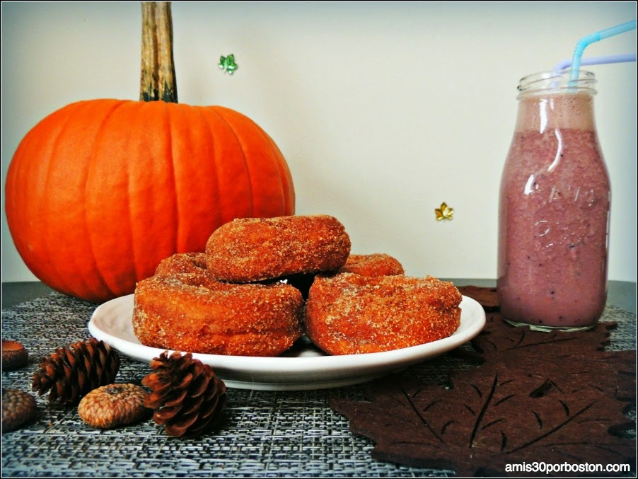 Apple Cider Donuts de la Honey Pot Hill Orchards