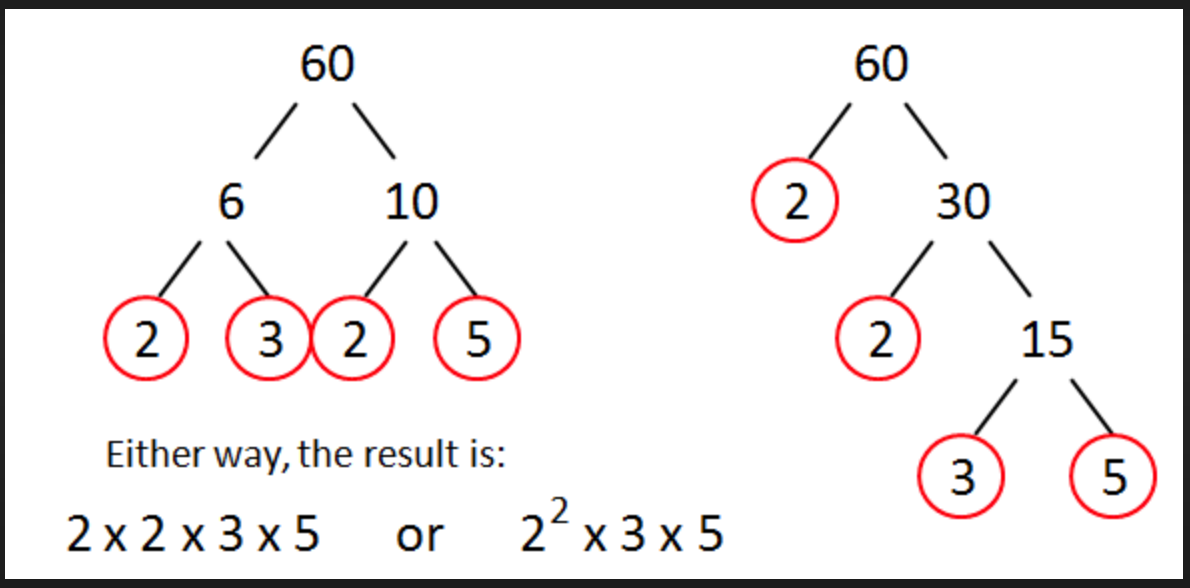 prime factorization worksheet 6th grade pdf