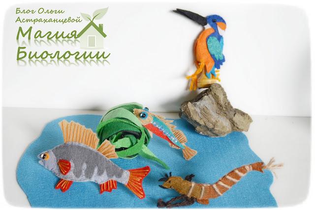 рыбий-дом-Бианки-Магия-биологии-колюшка