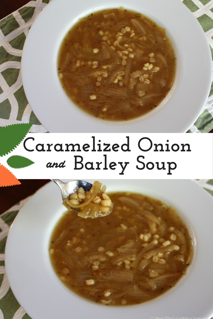 Mary Ellen's Cooking Creations: Caramelized Onion and ...