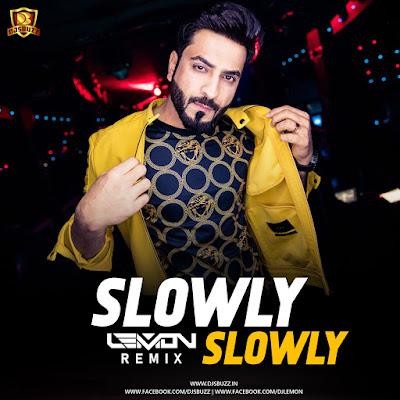 Slowly Slowly (Remix) – DJ Lemon
