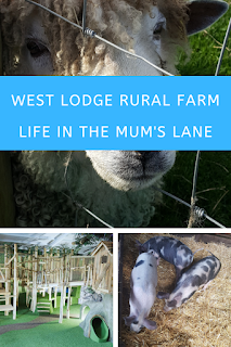 West Lodge Rural Farm