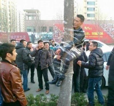 Mann an Baum gefesselt lustige Rache Bilder