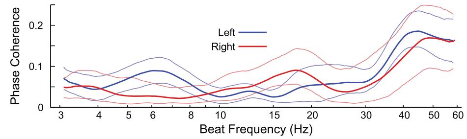 図:左右脳を区別するバイノウラルビート周波数