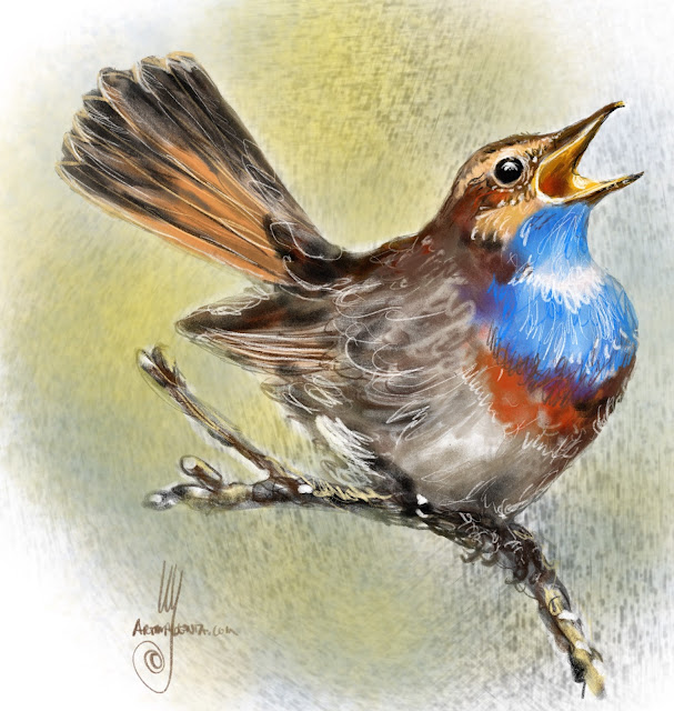 Bluethroat Bird painting by Ulf Artmagenta