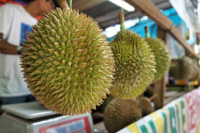 Balik Pulau Durian