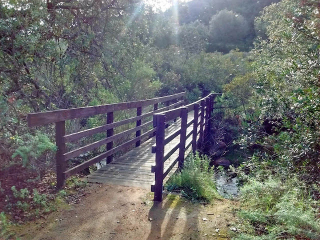 Oak Ravine to start the Chaparral Nature Trail at Dixon Lake