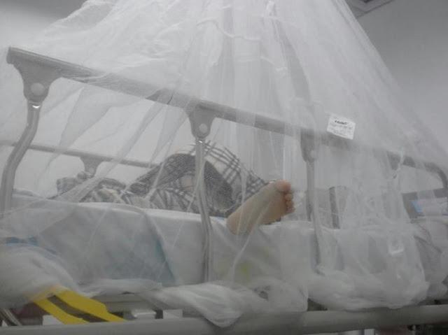 """La malaria y el sarampión """"se instalaron"""" en el hospital de niños J. M. de los Ríos"""
