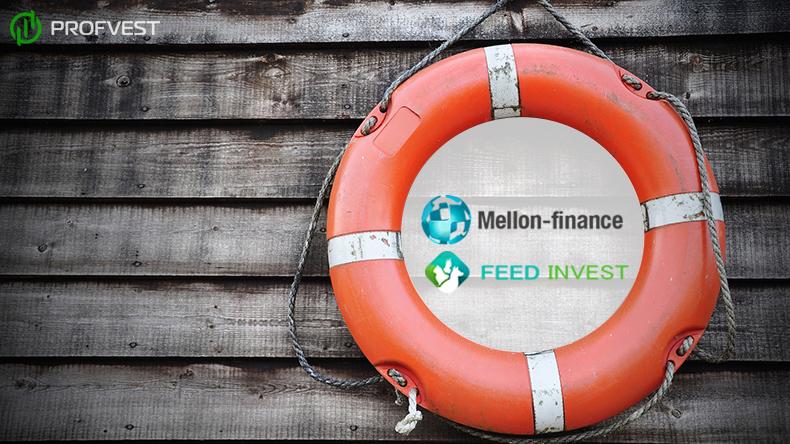 Выплата страховки по Mellon Finance и Feed Invest