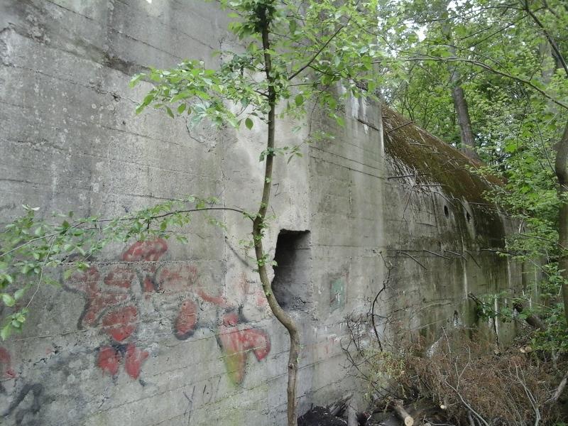 Wanderland Austria Zum Salzgitter Bunker In Der Lobau