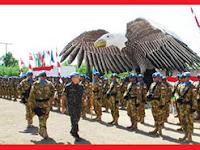 Pengiriman Pasukan Garuda-Sejarah