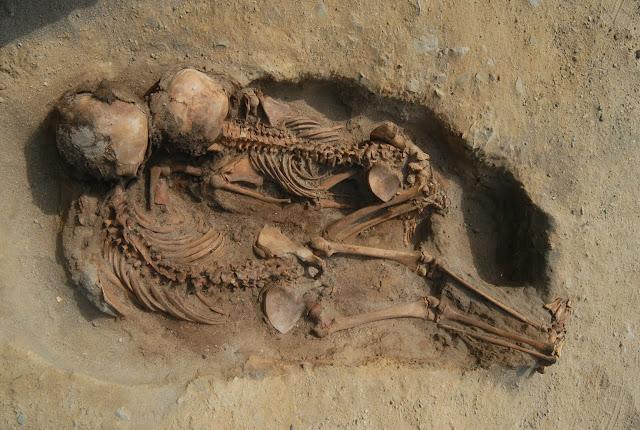 Hundreds of children and llamas sacrificed in ritual event in 15th century Peru