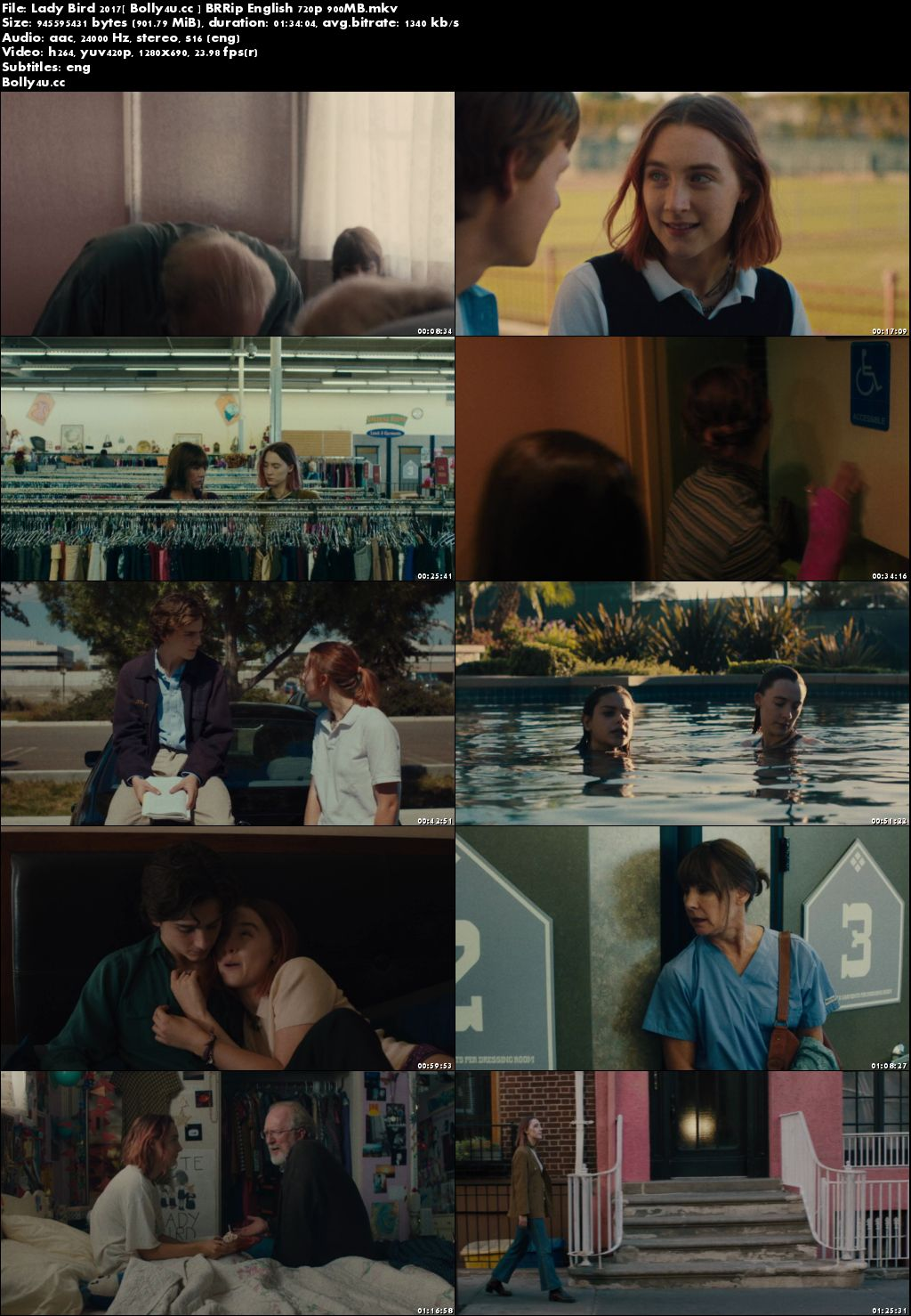 Lady Bird 2017 BRRip 900MB English 720p ESub Download