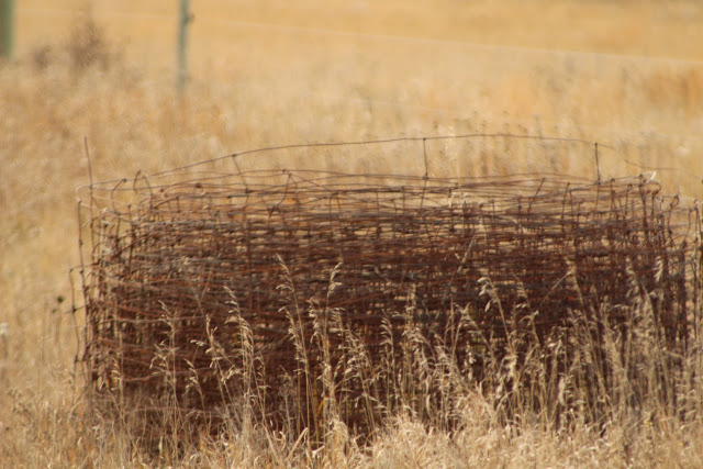 Roll of barbed wire in a field