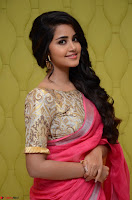 Anupama Parameswaran in Saree ~  Exclusive 001.jpg