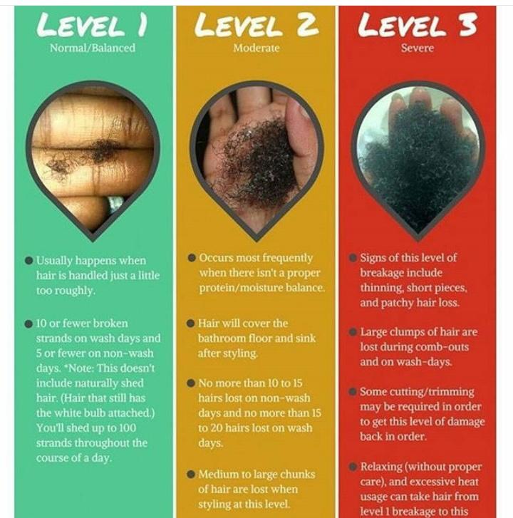 Bravechics Diyhaircare Amp Makeup Natural Hair Journey