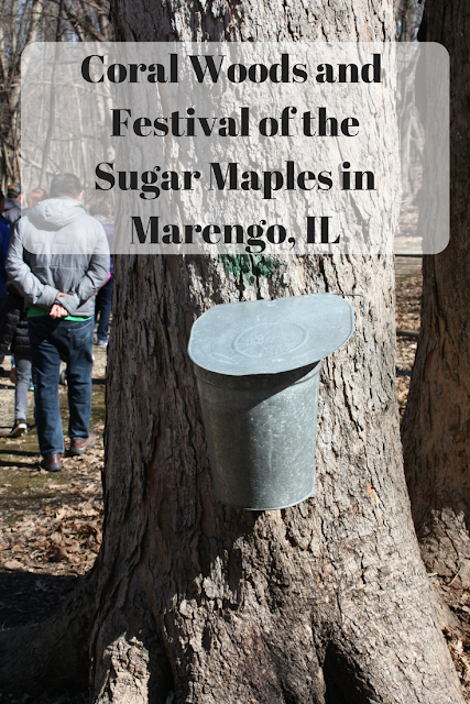 Coral Woods and  Festival of the Sugar Maples in Marengo, IL
