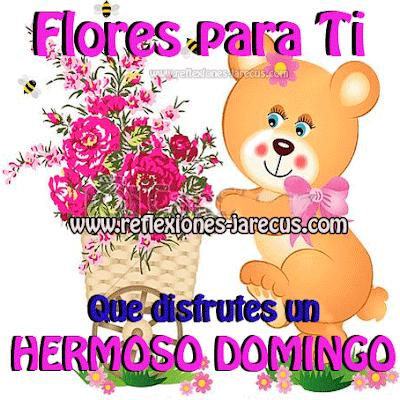 Flores para Ti,  Que disfrutes un  Hermoso Domingo