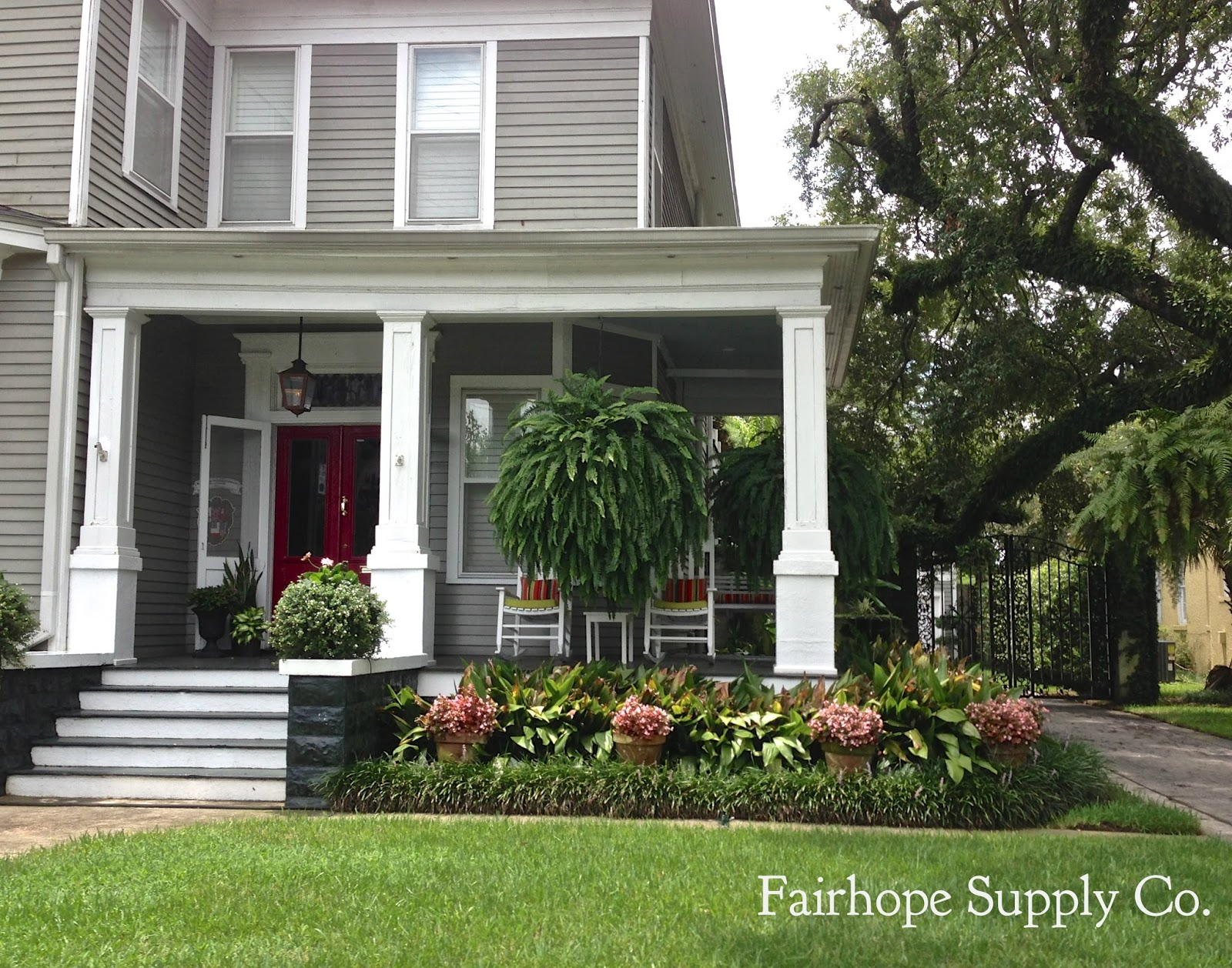 Front Porch Ferns