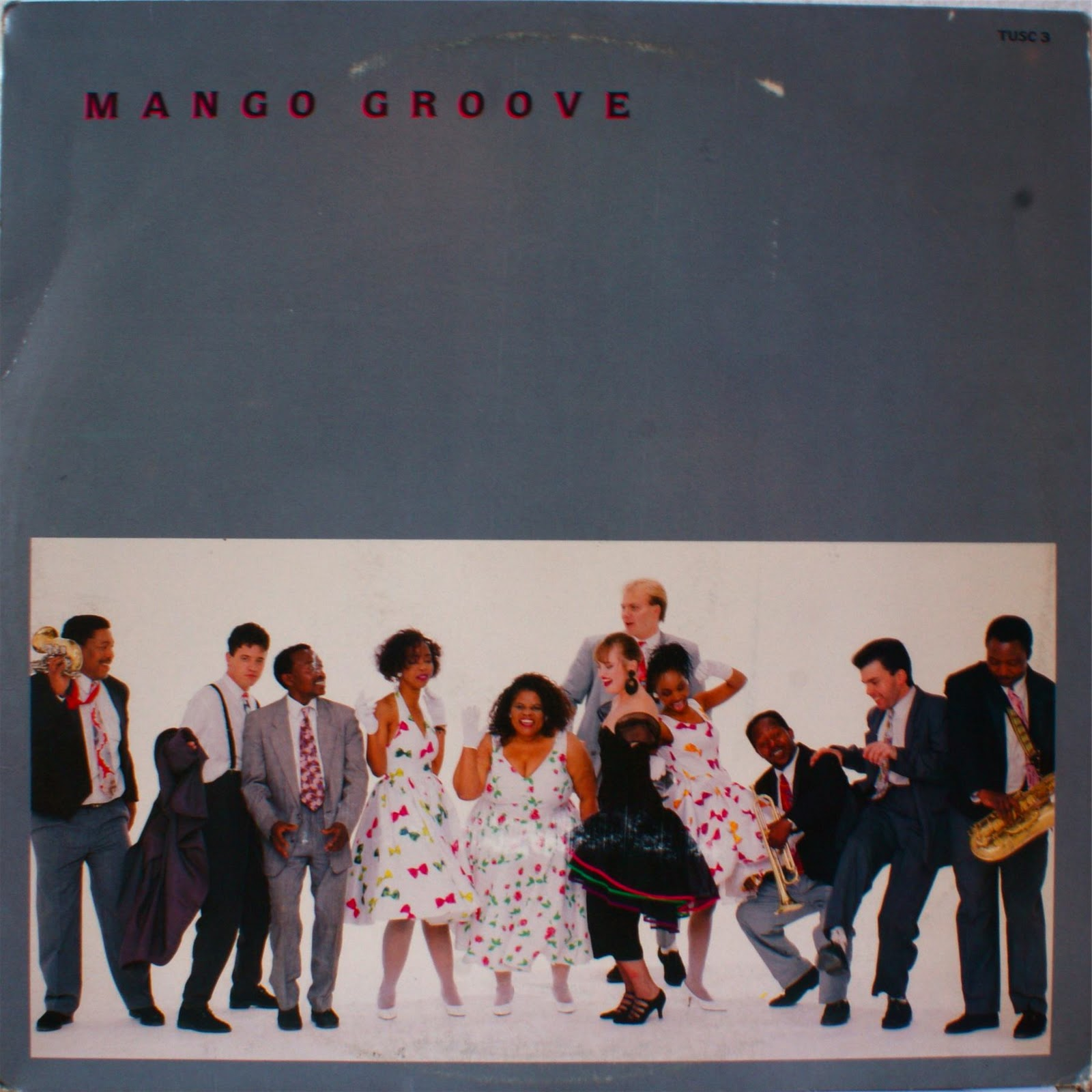 Afro Synth Mango Groove Mango Groove 1989