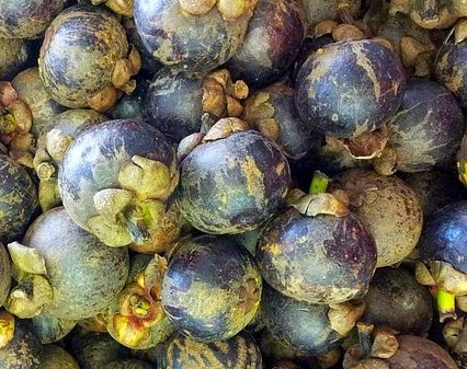 The Secret of Mangosteen, a Unique Superfood Power