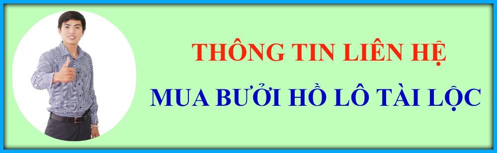 lien-he-dia-chi-MUA-BUOI-HO-LO-dip-tet-o-dau-GIA-RE-TPHCM