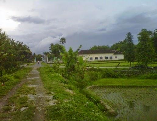 foto atau gambar pemandangan alam pedesaan di sore hari setelah turun hujan