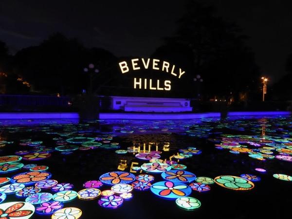 Beverly Hills Lily Pond Neon Night installation
