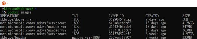 WSL Run Docker CLI