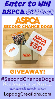 aspca second chance dogs giveaway