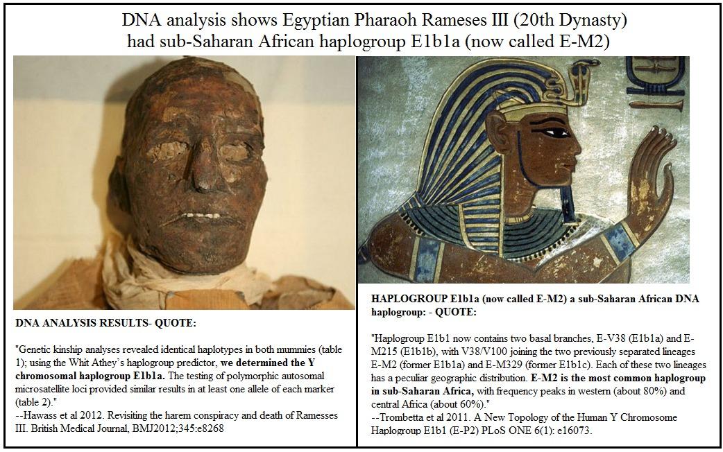 Did E1b1a mutate from E1b1b? And if it did    | Egyptsearch Reloaded