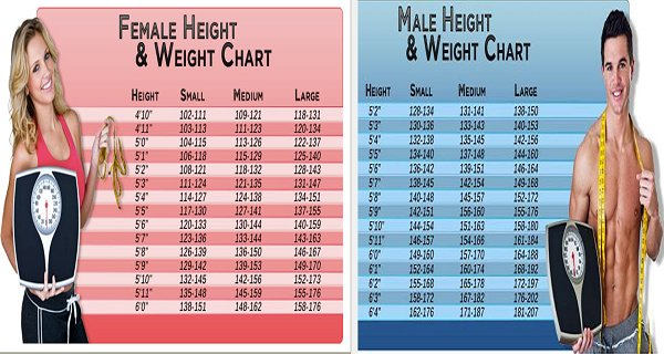 Chart: This Is What You Should Weight According To Age, Body Shape And Height