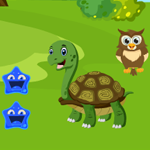Games4King Green Turtle Rescue