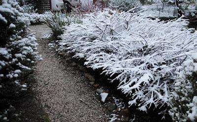 Snow, Greendale