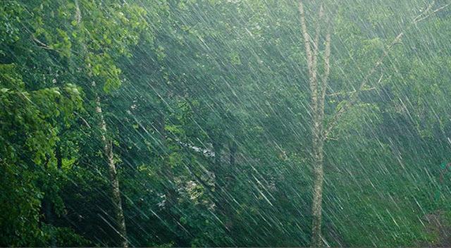 tips-kesehatan, menjaga-kesehatan-saat-hujan