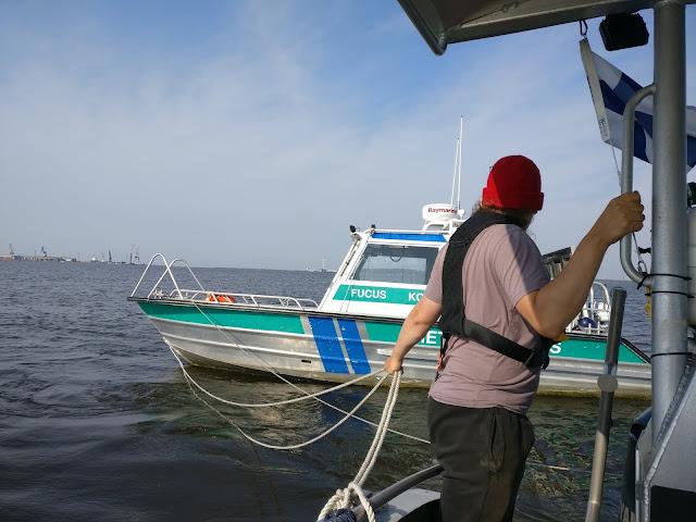 Fucus-vene taustalla, henkilö seisoo toisessa veneessä ja pitelee hinausköyttä.
